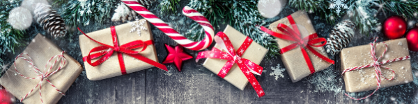 Holiday Social Media Gift Guide
